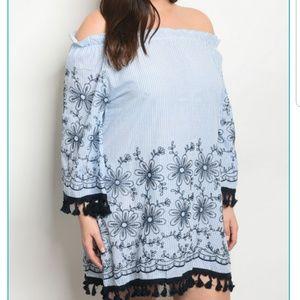 FINAL PRICE DROP! PLUS Blue and White Stripe Dress